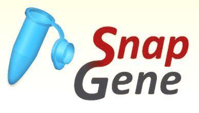 SnapGene 5.2.4 Crack + Keygen Free Download